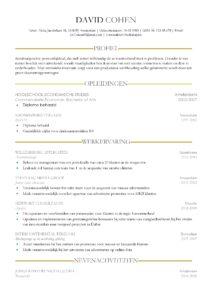Gratis Curriculum Vitae Sheffield, cv voorbeeld