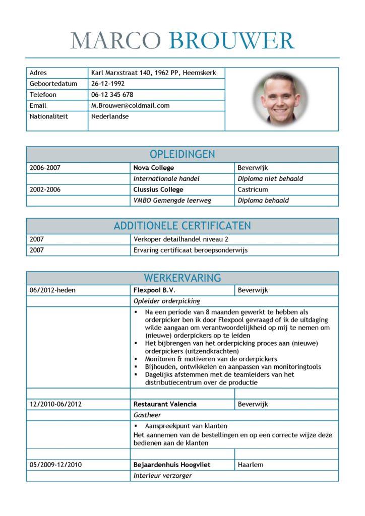 CV Voorbeeld Leicester (Blue Dolphin) 1/2, gratis unieke curriculum vitae, goede cv voorbeeld