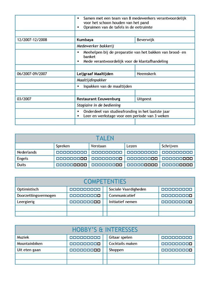 CV Voorbeeld Leicester (Blue Dolphin) 2/2, gratis unieke curriculum vitae, goede cv voorbeeld