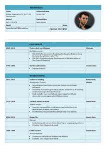 CV Voorbeeld Carlyle (Marina Blue) 1/2, voorbeeld cv, WO HBO curriculum vitae