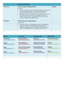 CV Voorbeeld Carlyle (Marina Blue) 2/2, voorbeeld cv, WO HBO curriculum vitae