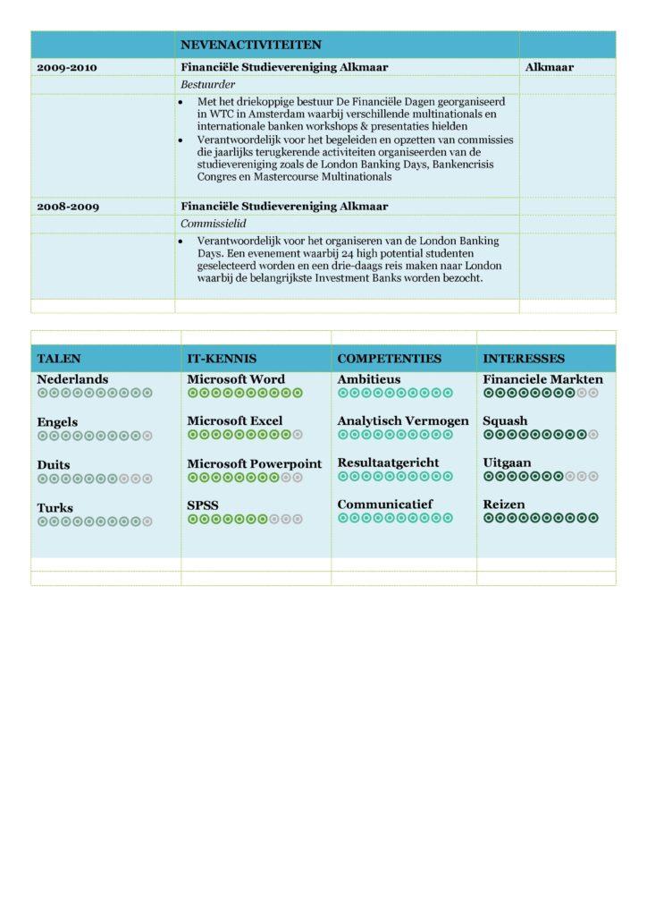 CV Voorbeeld Carlyle (Mixed Ocean) 2/2, gratis curriculum vitae, gratis cv sjabloon
