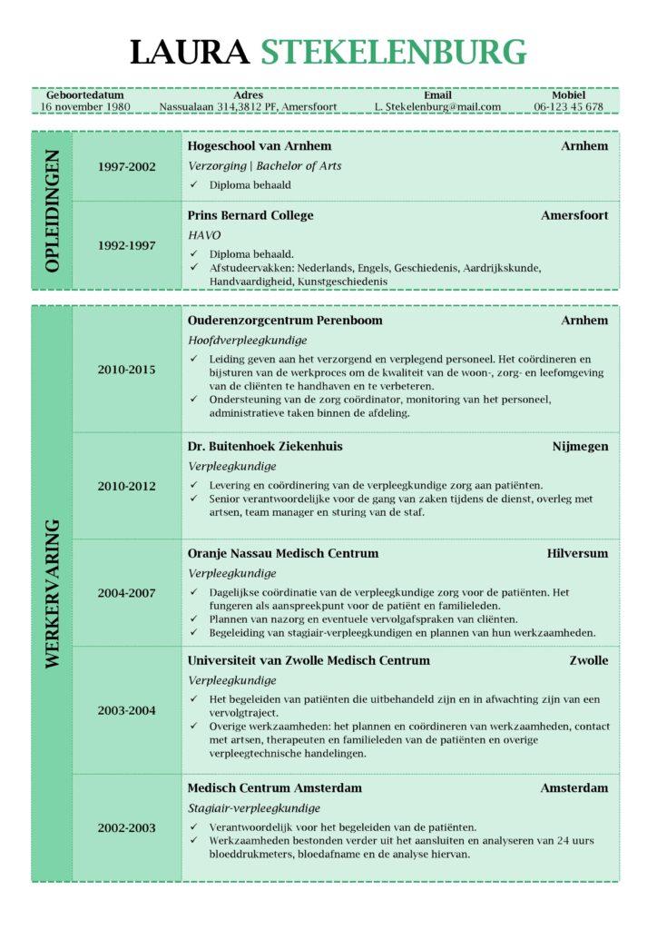 CV Voorbeeld Lancaster (Green Peace) 1/2, curriculum vitae maken met deze prachtige gratis cv sjabloon, pagina 1