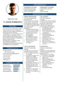 CV Sjabloon Portsmouth 1-2 (2 paginas)